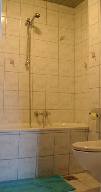 Dusche, Badewanne und WC